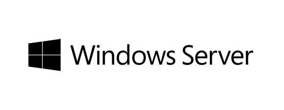 Fujitsu Microsoft Windows Server 2019 - Lizenz - 100 Benutzer-CALs