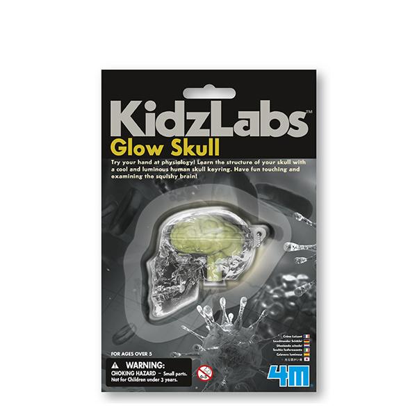 4m Glow Skull
