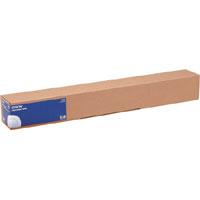 Epson Fotopapier, glänzend - Rolle (60 cm x 30,5 m) - 250 g/m2