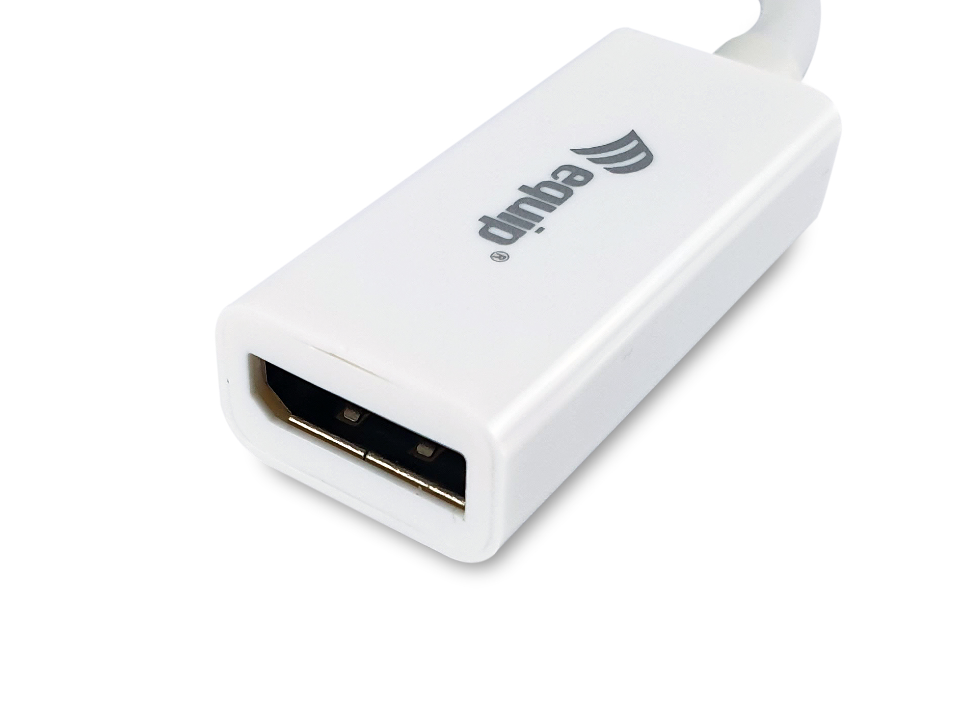 equip Life - DisplayPort-Adapter - Mini DisplayPort (M)