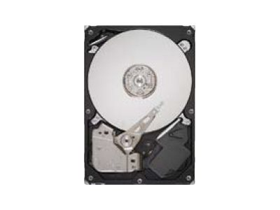 Seagate DB35.4 Series ST3250310CS