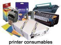 Epson Premium - Fotopapier, glänzend - Rolle (111,8 cm x 30,5 m)