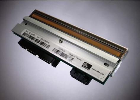 Zebra 1 - 300 dpi - Druckkopf - für Zebra ZM600