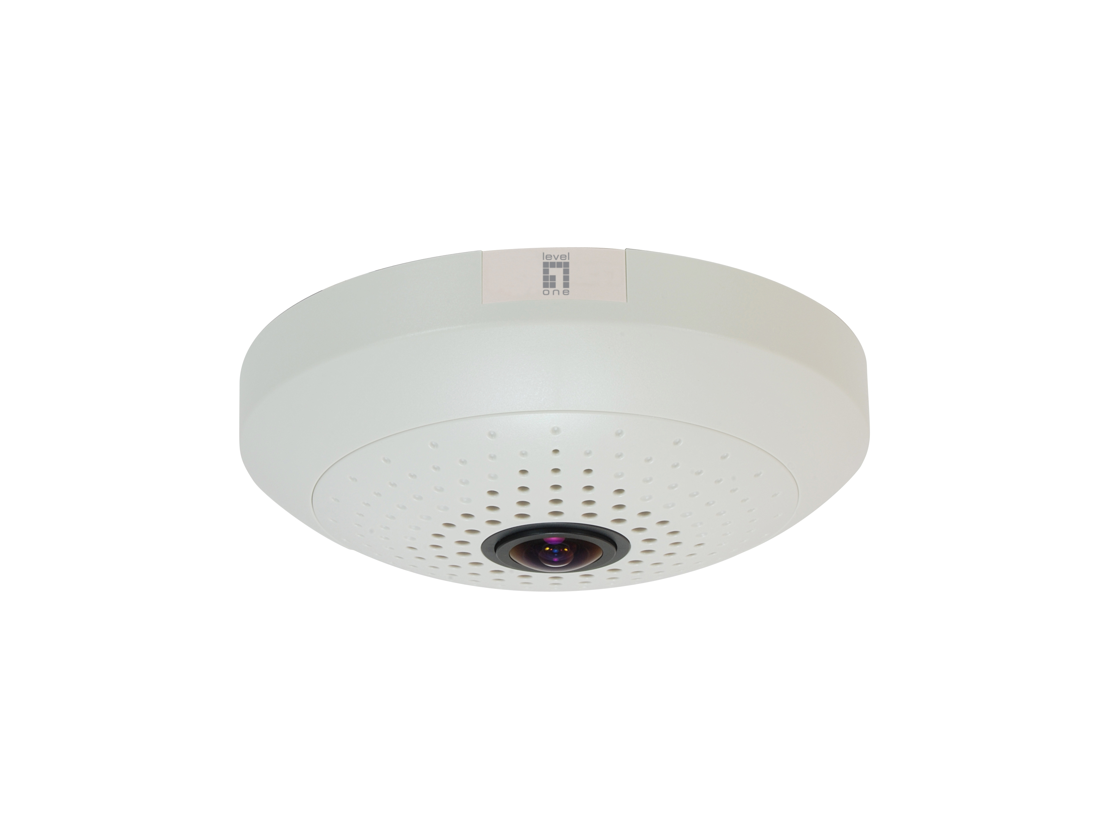 LevelOne Panoramic Dome Network Camera - 10-Megapixel - PoE 802.3af - Day & Night - WDR