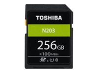 High Speed N203 - Flash-Speicherkarte - 256 GB