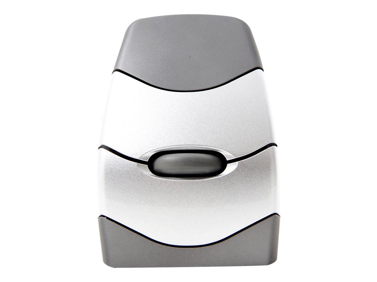 Bakker Elkhuizen DXT Precision - Maus - rechts- und linkshändig - kabellos - RF - kabelloser Empfänger (USB)