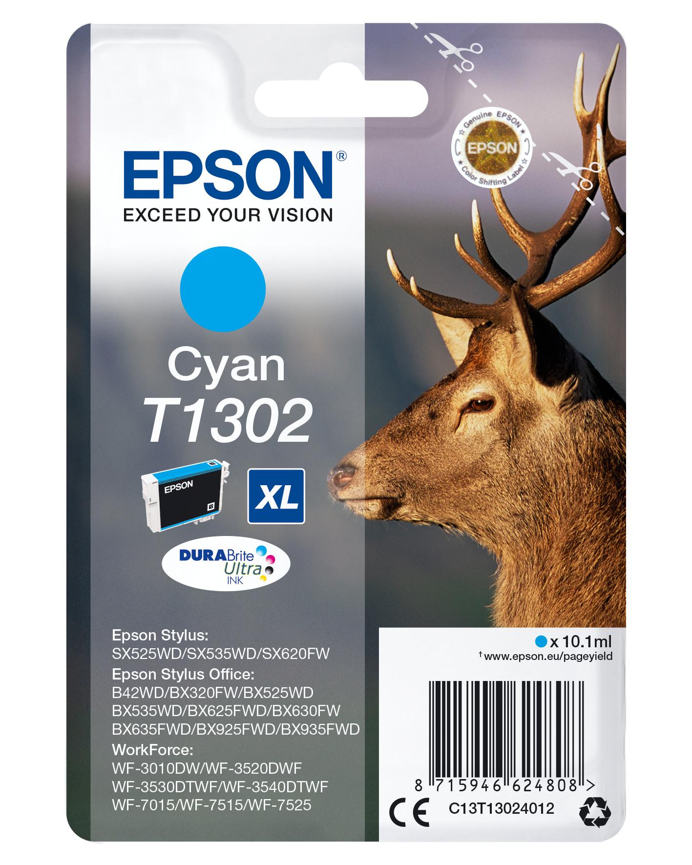 Epson C13T13024012