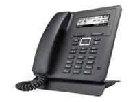 bintec elmeg IP620 - VoIP-Telefon - SIP - 4 Leitungen