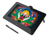 Cintiq Pro 13 5080lpi 294 x 166mm USB Schwarz Grafiktablett
