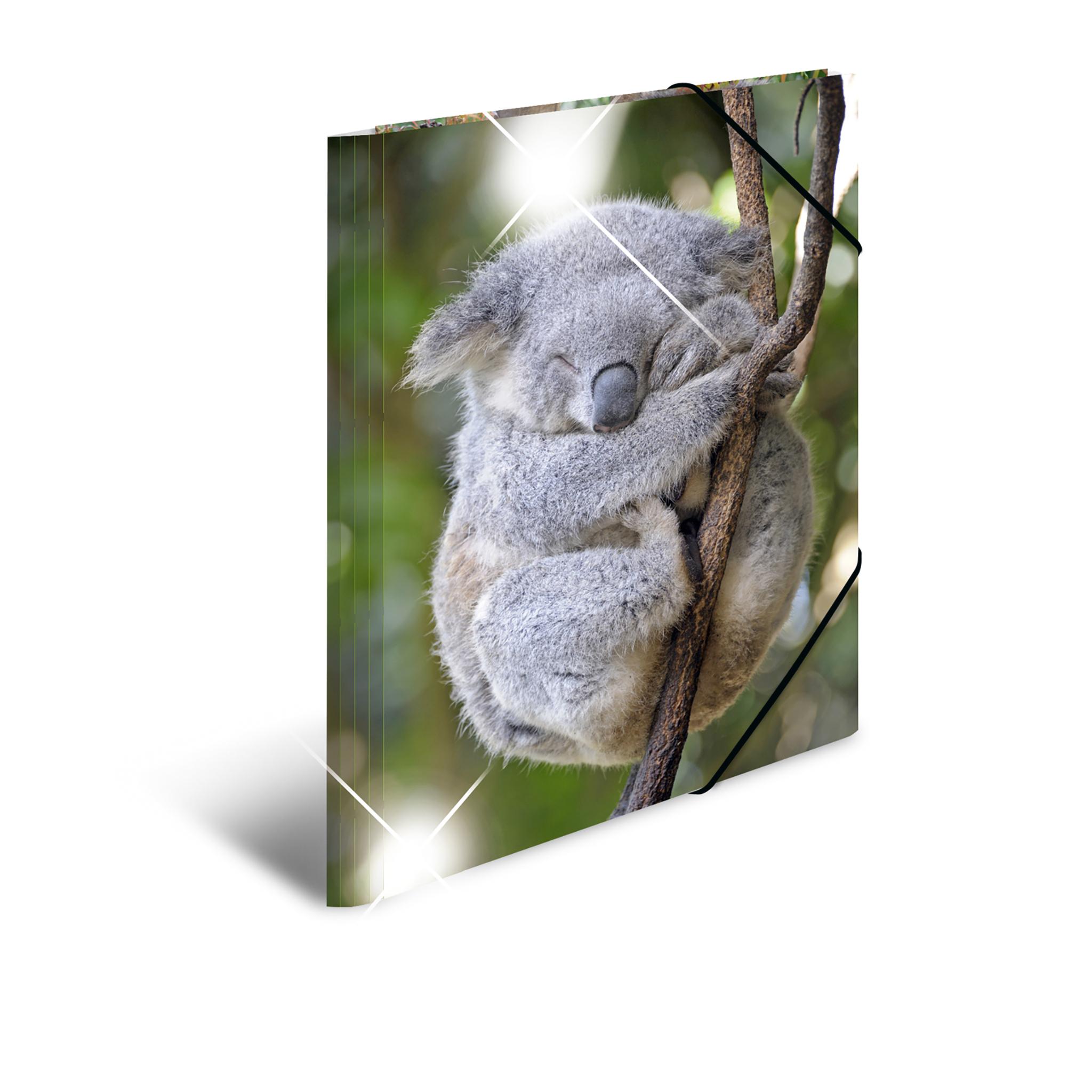 HERMA 19333 - Sammelmappe - Glossy - Tiere - A3 - Polypropylen (PP) - Koala