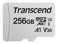 300S Speicherkarte 256 GB MicroSDXC Klasse 10 UHS-I