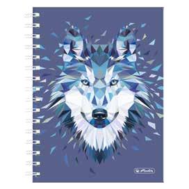 Herlitz 50027859 - Abbildung - Mehrfarbig - 200 Blätter - Kariertes Papier - Universal