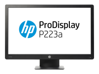 ProDisplay P223a 21.5Zoll Full HD VA Schwarz Computerbildschirm