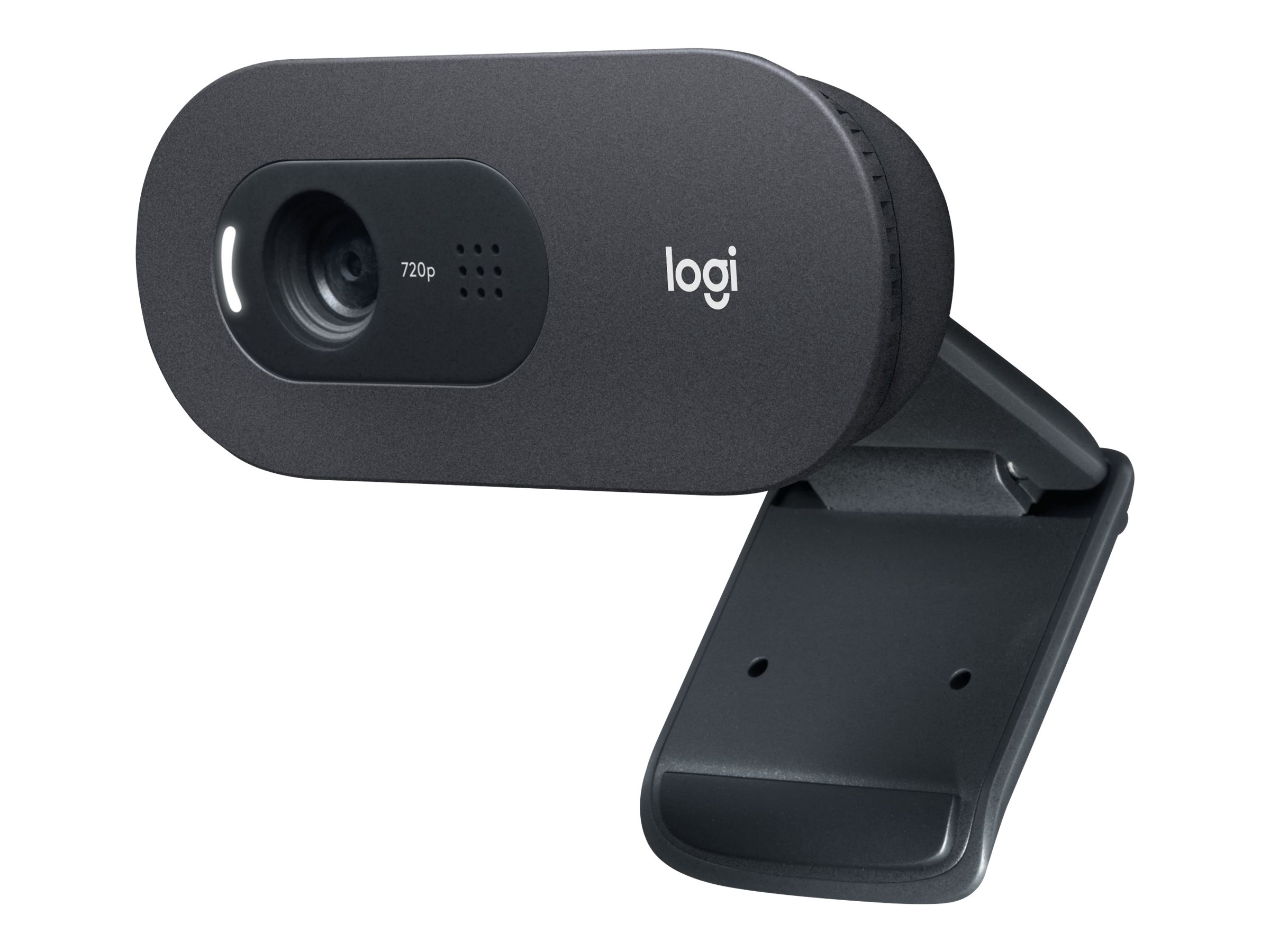 Logitech C505 - Web-Kamera - Farbe - 720p - feste Brennweite