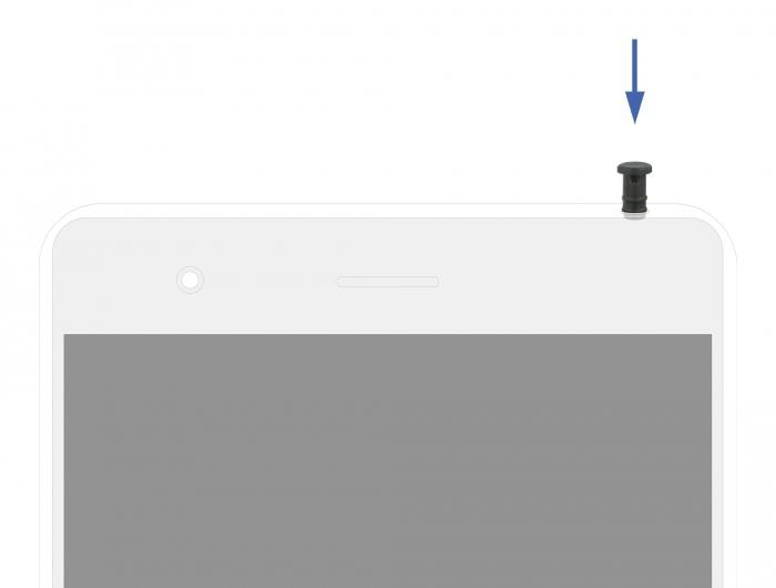 Delock Staubschutzhaube für 3,5 mm Klinkenstecker - Schwarz (Packung mit 10)