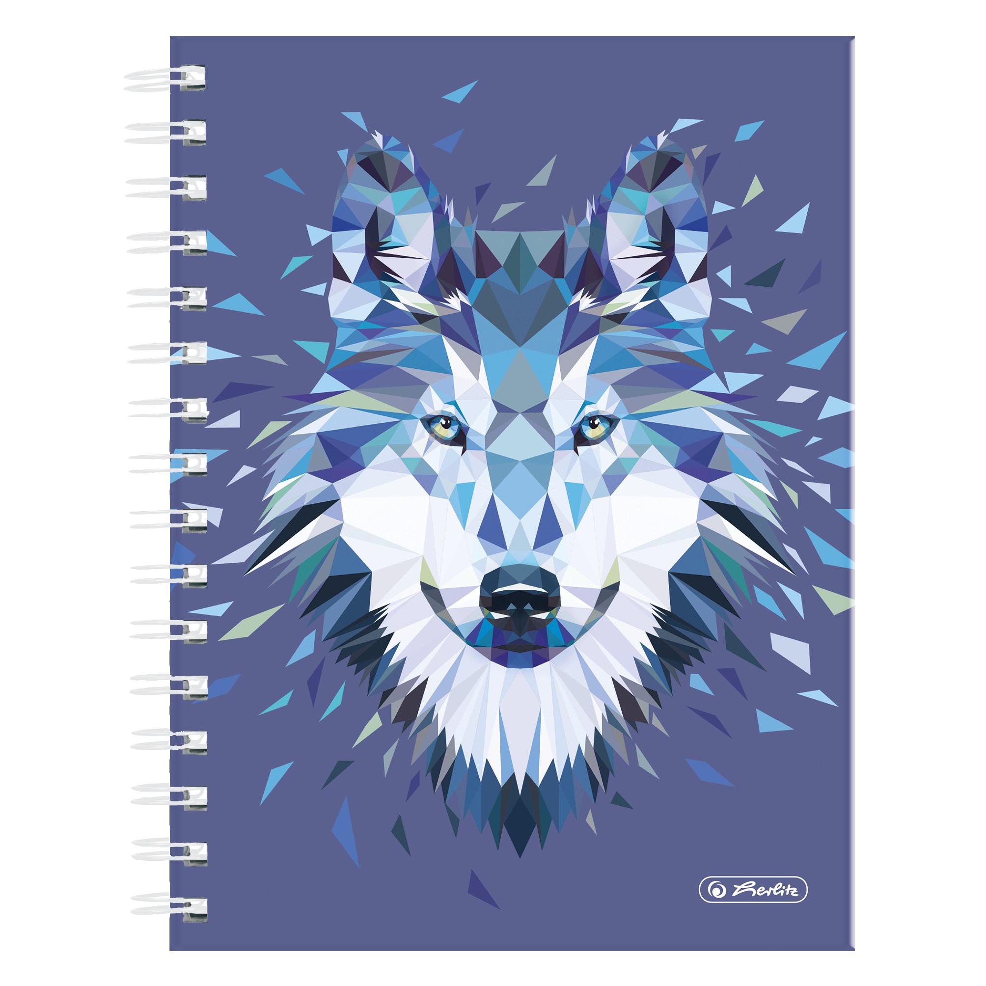 Herlitz 50027750 - Abbildung - Blau - A5 - 100 Blätter - Kariertes Papier - Kinder