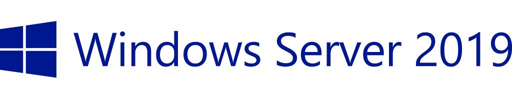 HPE Microsoft Windows Server 2019 - Lizenz - 10 Benutzer-CALs