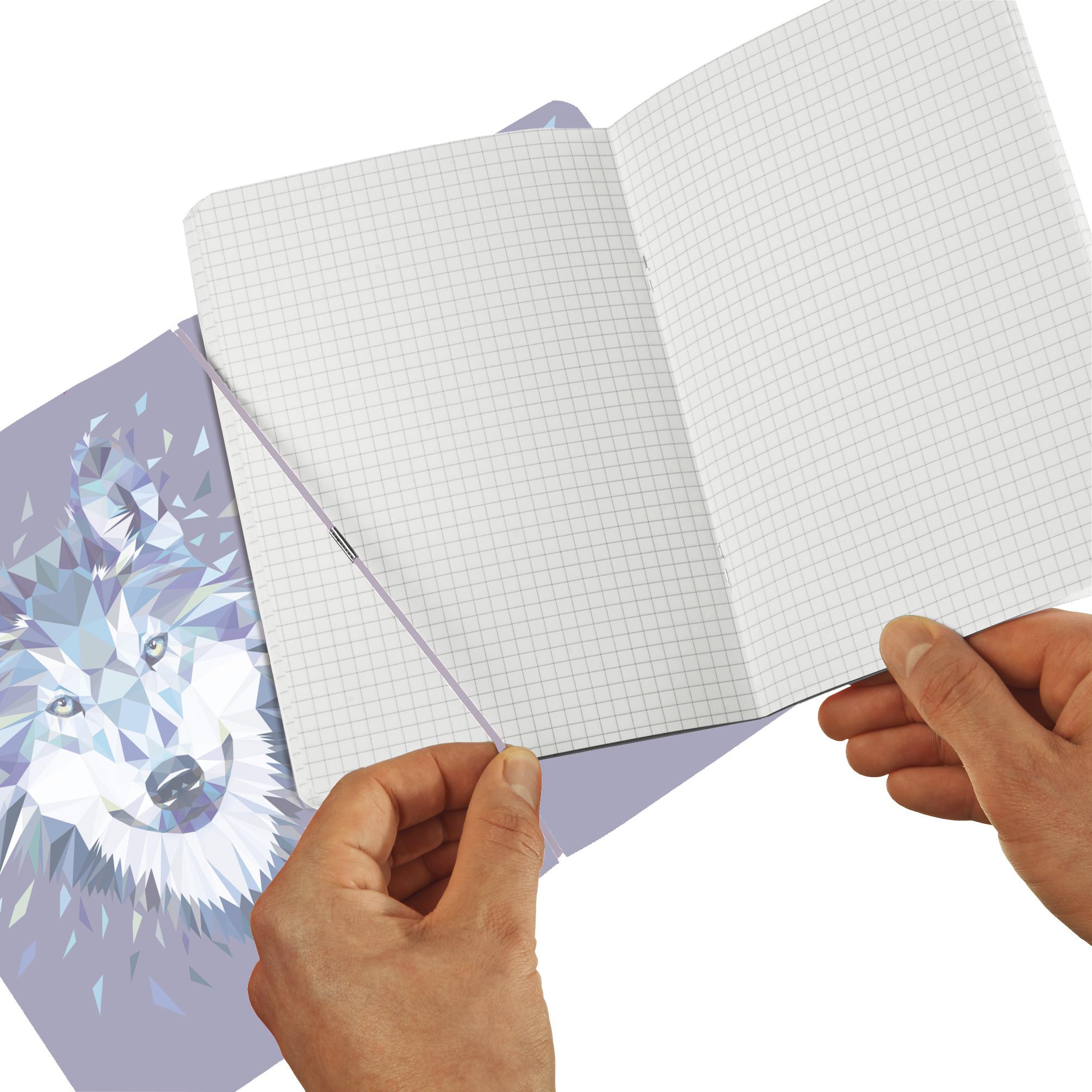 Herlitz 50027262 - Abbildung - Blau - A4 - 80 Blätter - 80 g/m² - Kariertes Papier