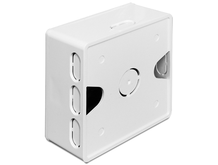 Delock Back Box - Installationskasten Netzwerkoberfläche