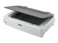 Expression 12000XL Pro 2400 x 4800 DPI Flachbettscanner Grau - Weiß A3