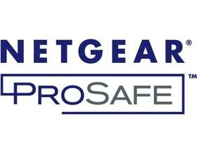 Netgear GSM7328FL - Software - Nur Lizenz, Upgrade