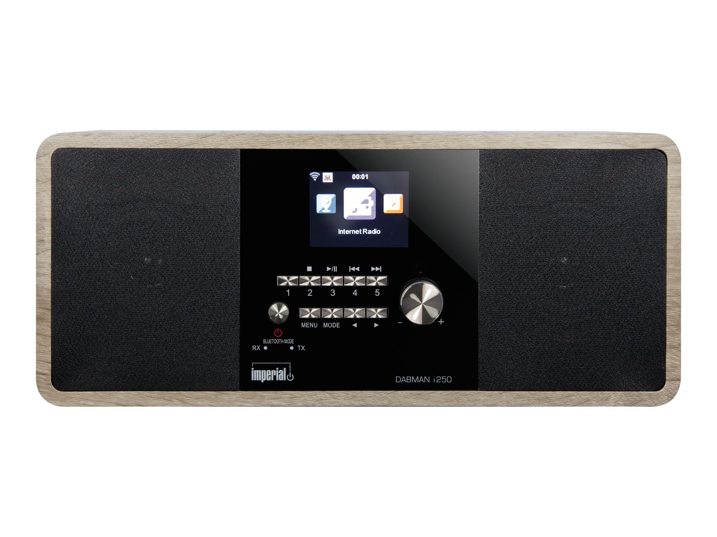 Telestar imperial DABMAN i250 - Netzwerk-Audio-Player - 20 Watt (Gesamt)
